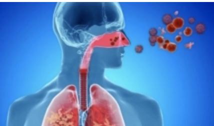 Circulación de tres virus respiratorios aumentan casos de afecciones febriles